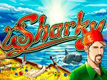Sharky в Вулкане на деньги