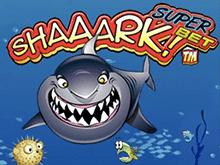 А-а-акула! Суперставка